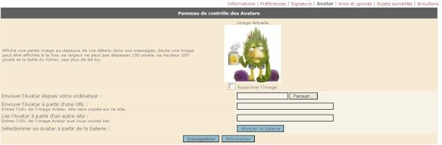 Comment installer un avatar? Avatar11