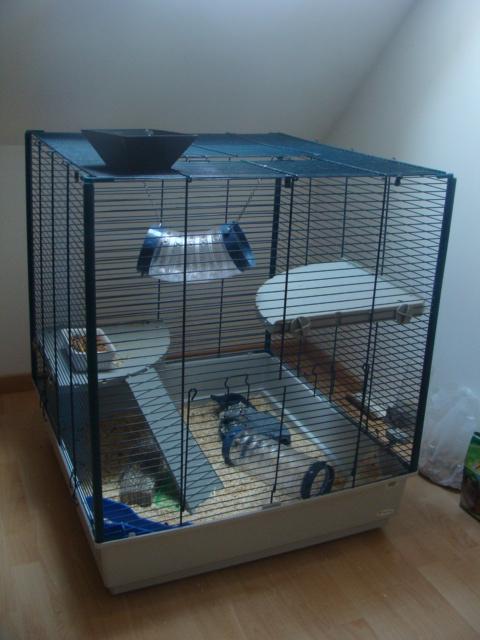 Cage Furet XL a vendre Annonc12