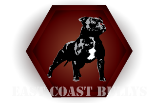 Eastcoastbullys