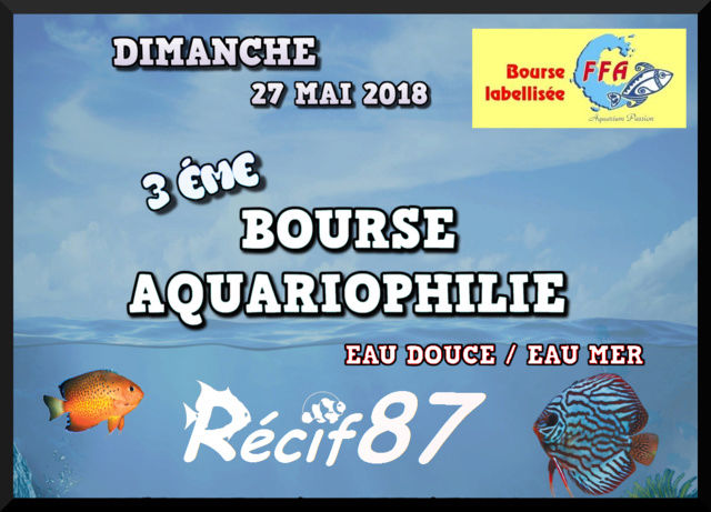 photo logo bourse recif87