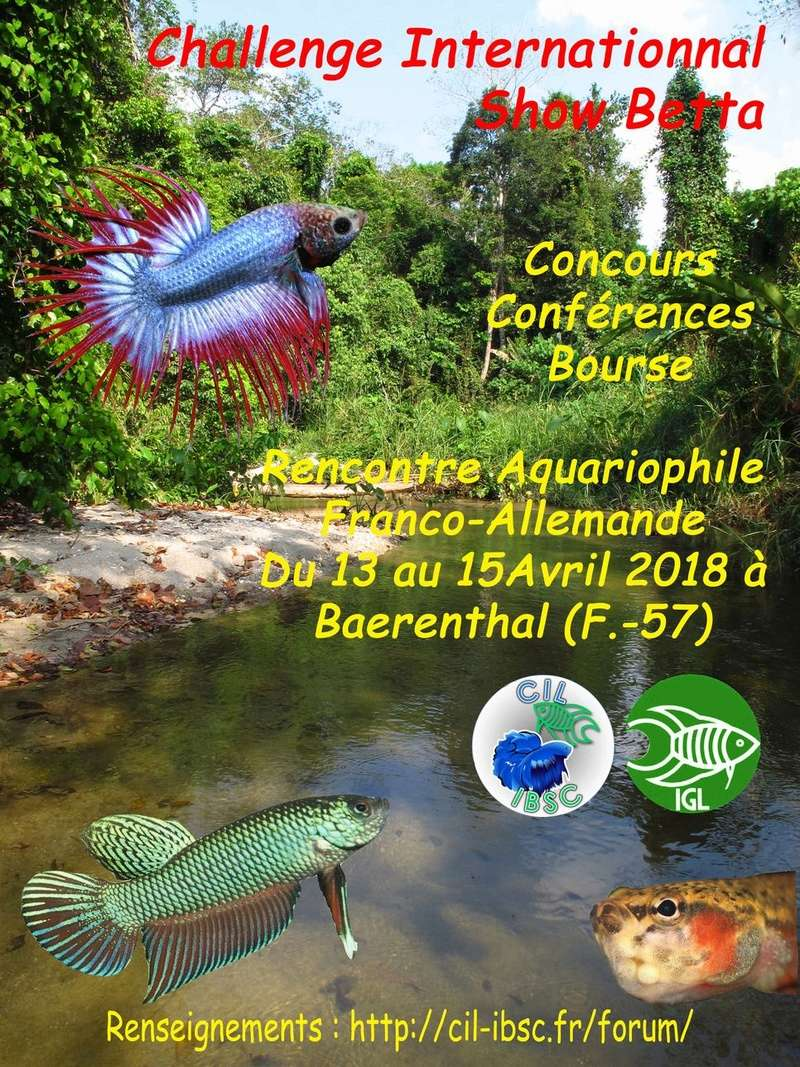 congrès franco allemand CIL / IGL, Baerenthal (57). 13-15 avril  Affich10
