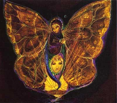 Vole Navane Vole papillon  - Page 2 Butter10