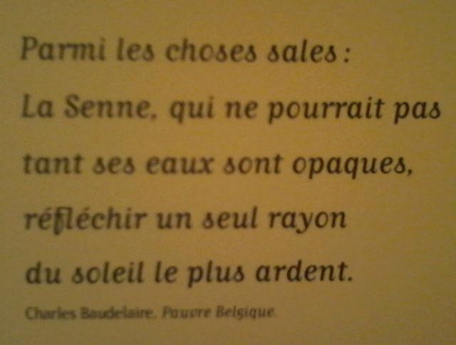 La Senne vue par Beaudelaire Senne210