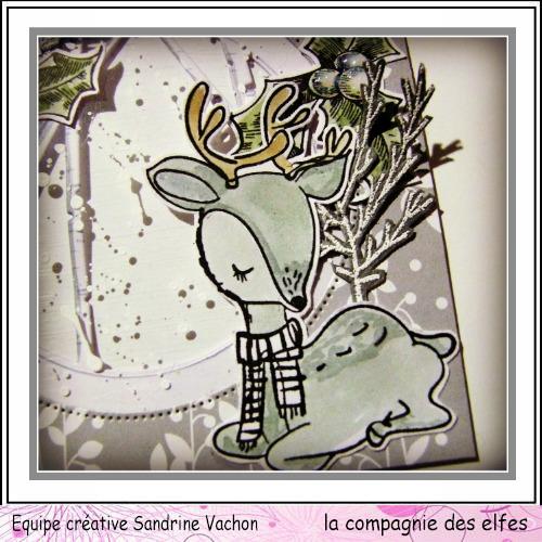 Cartes créatives Janvier 2019 Carte_58