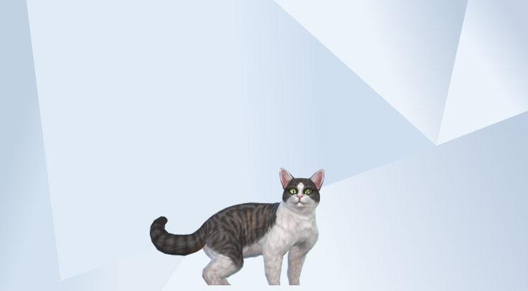 Pet Parade - #TS4CatsAndDogs - Share Thread 00_110