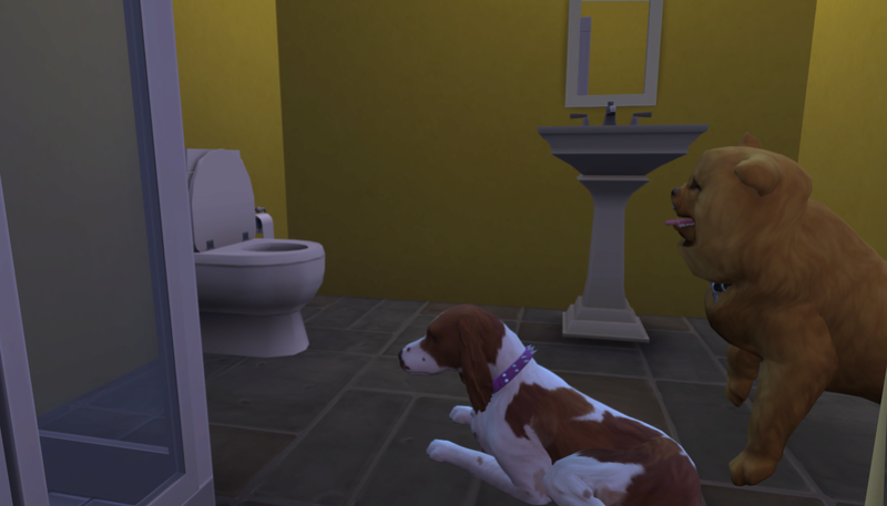 Caption This: Special Pictures That Need A Caption (All Sim Games) - Page 2 01-19-10