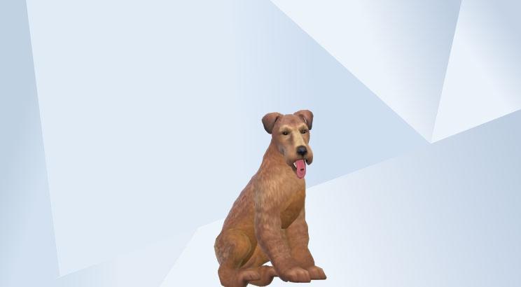 BG's Sims #BGsCreations  - Page 8 0810