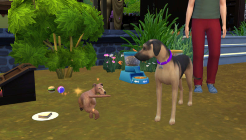 Caption This: Special Pictures That Need A Caption (All Sim Games) 11-19-10