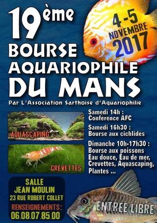 Bourse A S A LE MANS 4/5.NOVEMBRE 2017 19247710