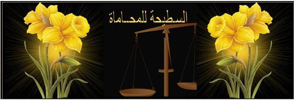 السطيحه للمحاماه والاستشارات القانونيه