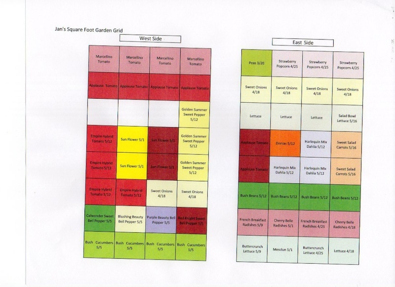 My SFG Grid Img06112