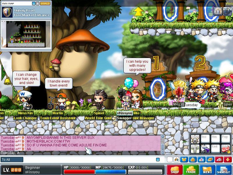 Hacker , n Insults th server =D Maple015