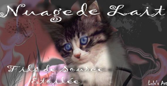 Lulu's Art Atelier - Page 3 991mon10