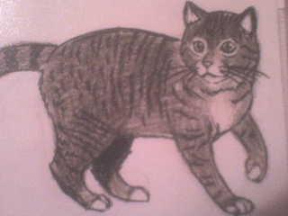 Mes dessins ! Dsc04513