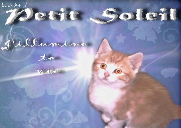Lulu's Art Atelier - Page 2 Soleil12