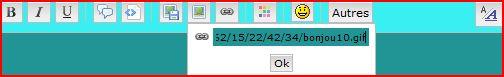 Tutoriel pour insérer une image ou créations dans une réponse ou nouveau message 810