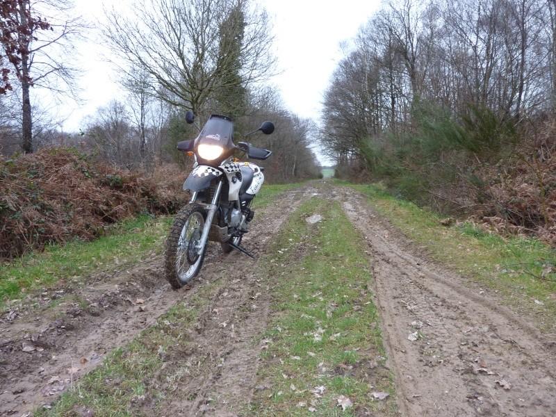 Vos plus belles photos de motos - Page 4 Gs_06_10