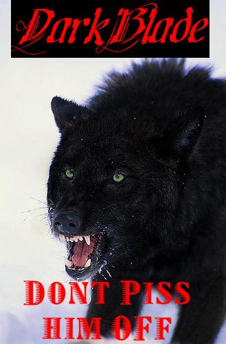 DarkBlades Wolf Bio Gw329h12