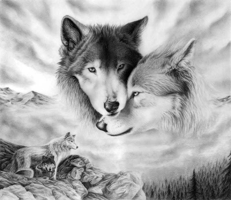 DarkBlades Wolf Bio Gw800h10