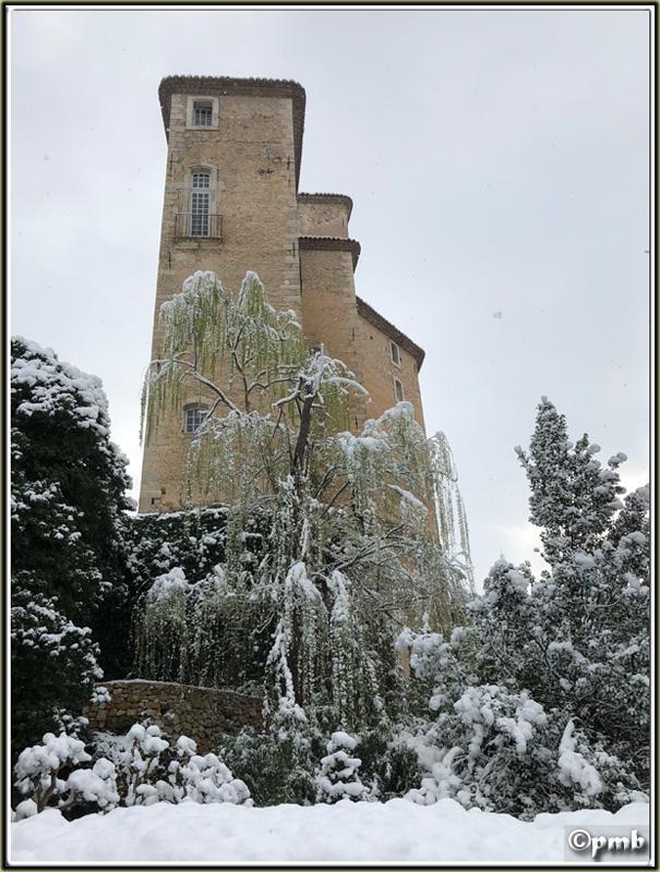 Il neige en Provence ! (avec quelques fleurs) 2018-093
