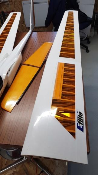 Motoplaneur Eflite Mystique RES 2.90m 20190512