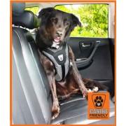Transport en voiture : grille, filet, ceinture... - Page 3 Safety10