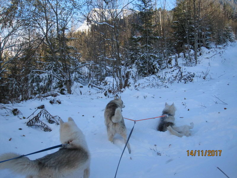 Saskia, Jiro, et leurs copains - Page 3 114