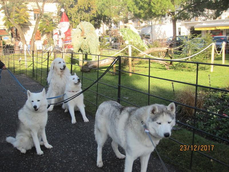 Saskia, Jiro, et leurs copains - Page 2 143
