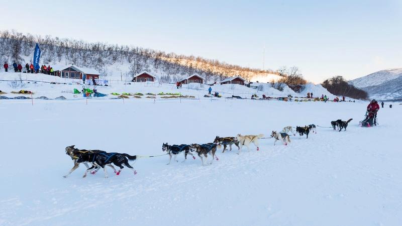 Finnmarklopet 2015 1ecjen10