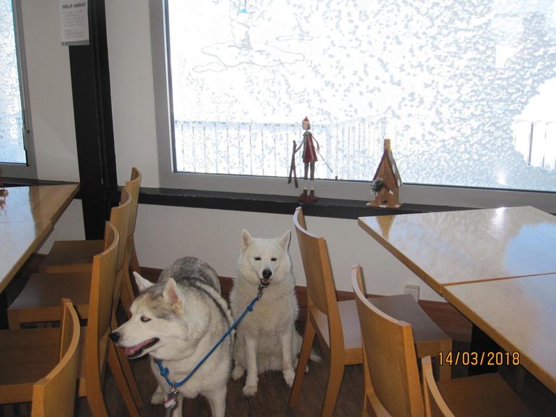 Saskia, Jiro, et leurs copains - Page 4 2514