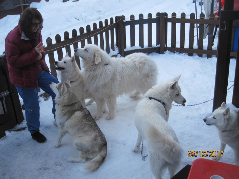 Saskia, Jiro, et leurs copains - Page 2 2613
