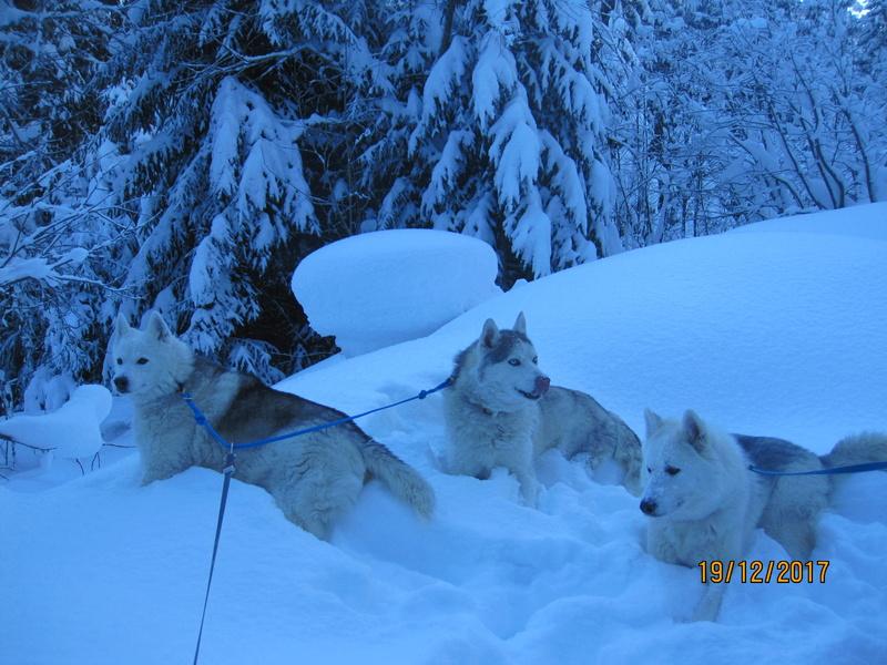 Saskia, Jiro, et leurs copains - Page 2 2_10