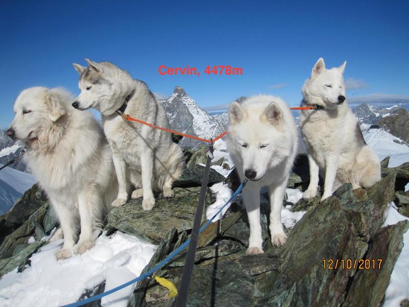 Saskia, Jiro, et leurs copains P3_apr10
