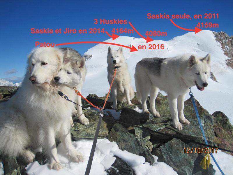Saskia, Jiro, et leurs copains P4_apr10