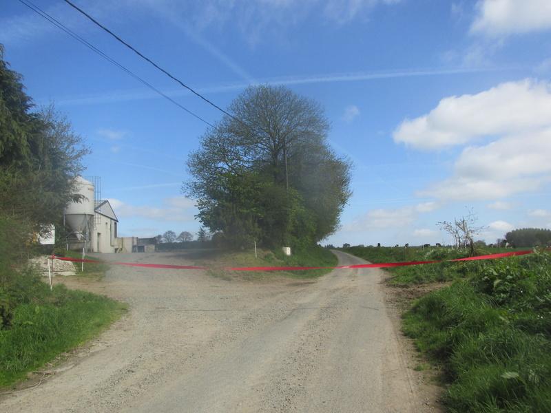 les traversées de routes par les bovins  Traver10