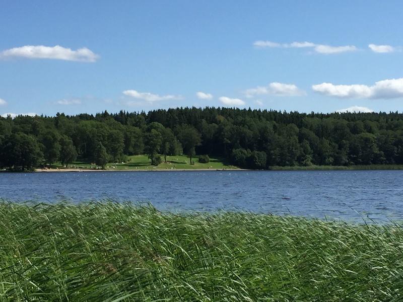 Le château de Steninge, résidence d'été d'Axel Fersen  2412