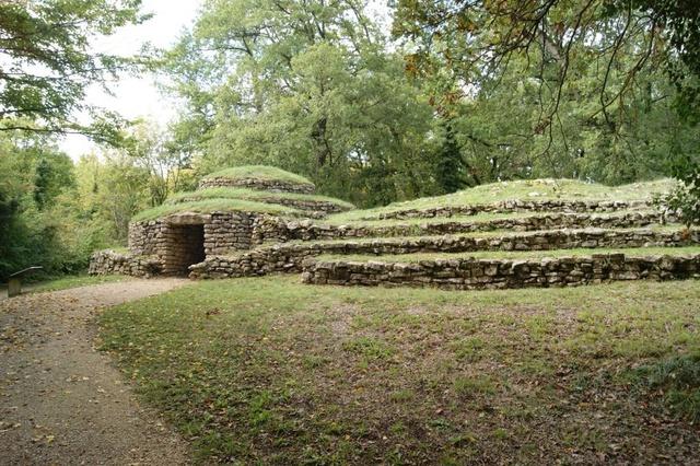 Nécropole tumulaire de Bougon (Deux-Sèvres)  Dsc08211