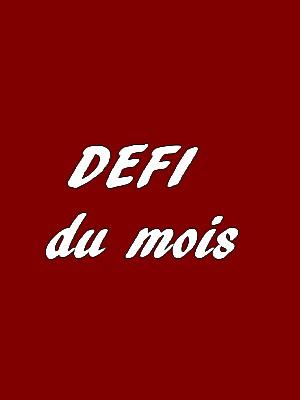 DEFI COUTURE DU MOIS