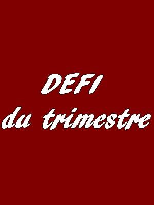 DEFI DU TRIMESTRE 2017