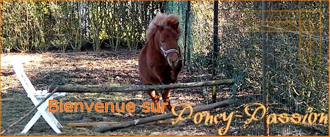 Poney-Passion