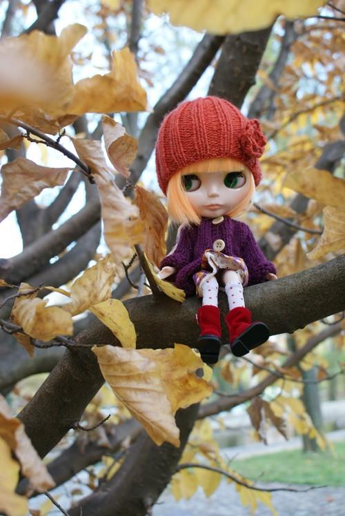 [Novembre 2010] L'automne Dsc03720