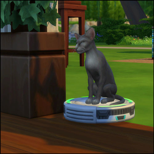 Caption This: Special Pictures That Need A Caption (All Sim Games) 11-30-13