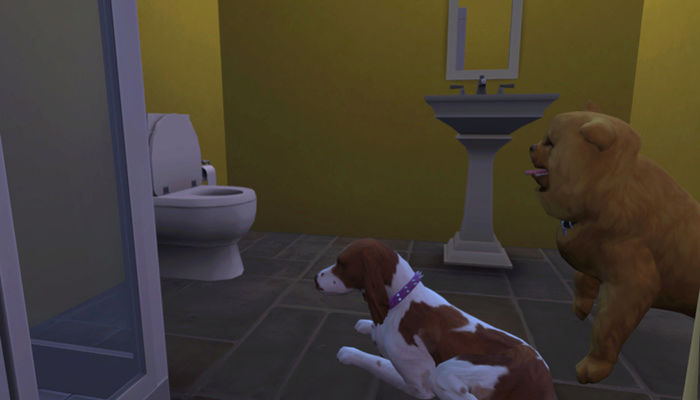 Caption This: Special Pictures That Need A Caption (All Sim Games) - Page 2 Bg10