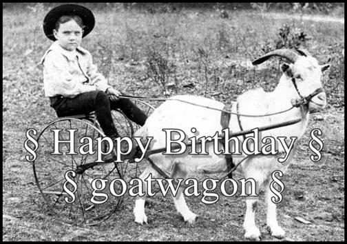 Happy Birthday! - Page 37 Rc044210