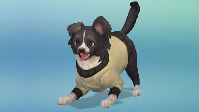 EA SPCAI Donation - Adopt A Virtual Pet This Week! Simgur11