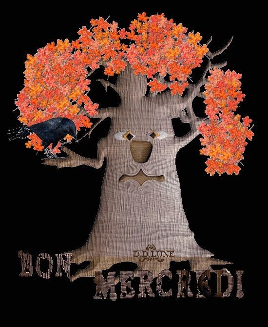 BON MERCREDI B_1_q_11