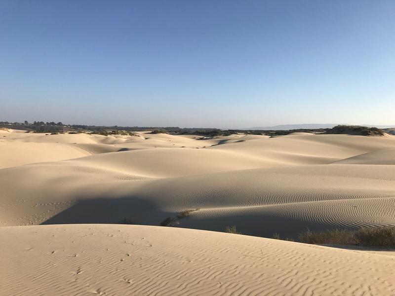 AU SUD DE PISMO BEACH Img_1210