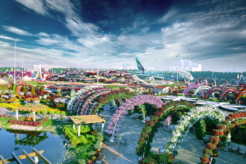 Dubaï Miracle Garden Ww10