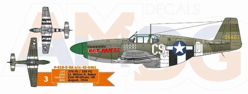 P-51 B Tamiya monture du Lt Wilson K.Beker 359 Th FG 6014