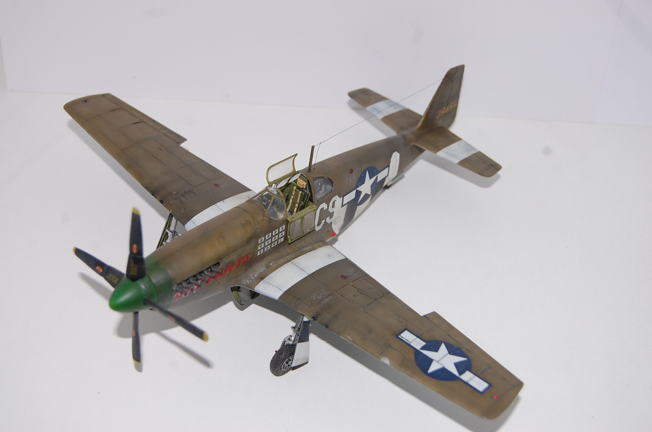 P-51 B Tamiya monture du Lt Wilson K.Beker 359 Th FG Dsc_3233